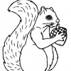 Happy Fall Squirrel Coloring Page