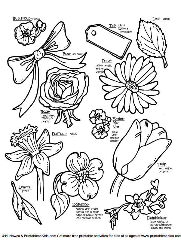 Botanical Flowers With Names Printables For Kids Free Word